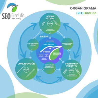 SEO Birdlife Proyecto Europeo organigrama