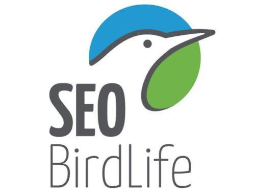 SEO Birdlife, un proyecto europeo de altura